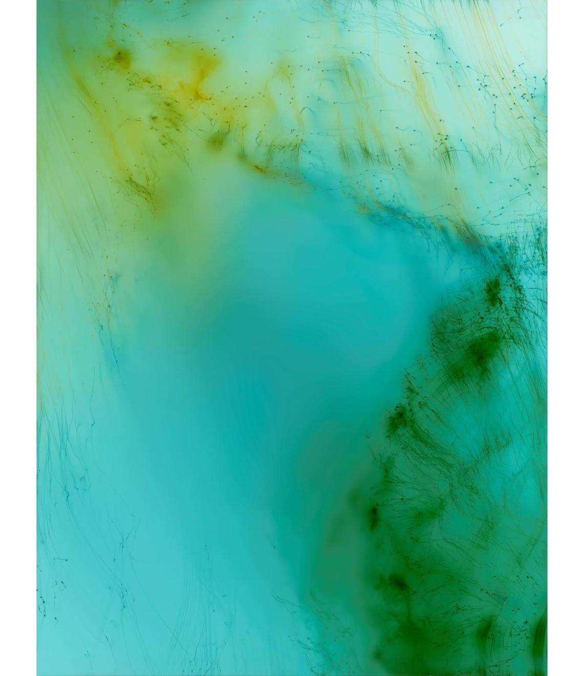 Wolfgang Tillmans: Fragile