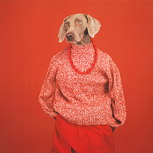 William Wegman Casual 2002